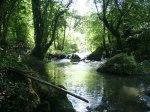 Parco del Ticino n2